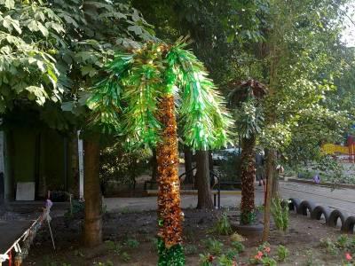 Пальма из пластиковых бутылок своими руками мастер