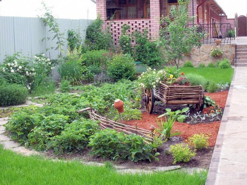 Планирование садового участка своими руками